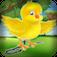 Bird Egg Drop Dash Puzzle